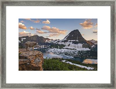 Living On The Edge Framed Print by Joseph Rossbach
