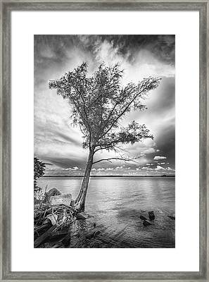 Living On The Edge Framed Print