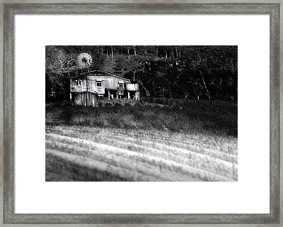 Living On The Land Framed Print by Holly Kempe