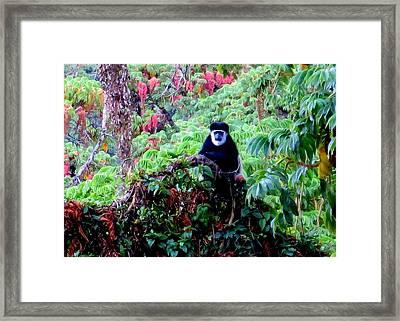Living Rousseau Framed Print