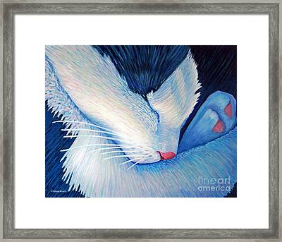 Living The Dream Framed Print by Brian  Commerford