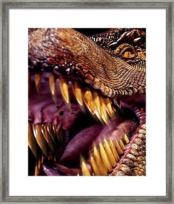 Lizard King Framed Print by Kelley King