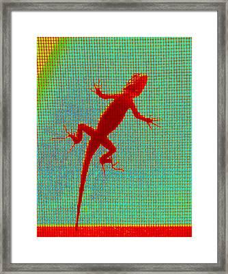 Lizard On The Screen Framed Print