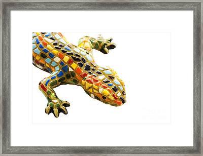 Lizard Souvenir By Antony Gaudi Framed Print by Soultana Koleska
