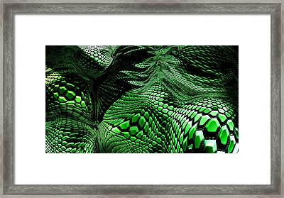 Dragon Skin Framed Print