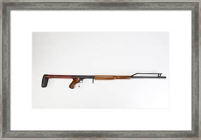 Ljutic Space Rifle Framed Print