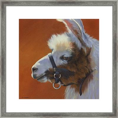 Llama Love Framed Print
