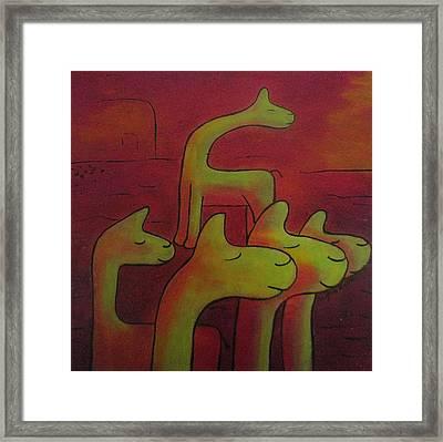 Llamas Looking Framed Print by Ingrid Russell