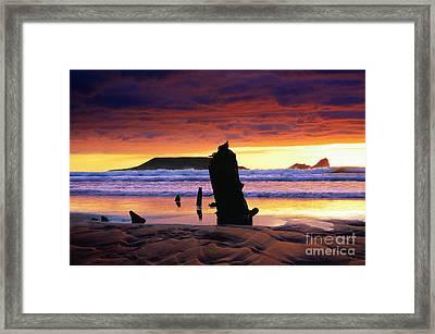 Llangennith Helvetia Wreck Framed Print