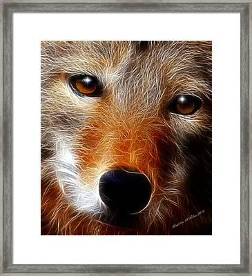 Lobo Framed Print by Madeline  Allen - SmudgeArt