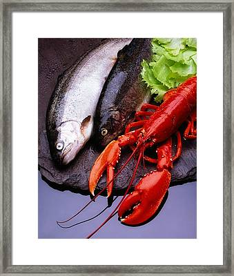 Lobster And Trout Framed Print by The Irish Image Collection