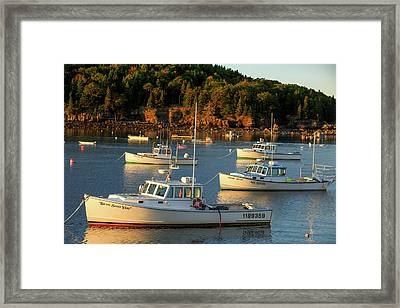 Framed Print featuring the photograph Lobster Boats At Bar Harbor Me  by Emmanuel Panagiotakis