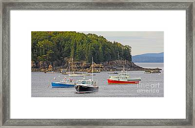 Lobster Boats In Bar Harbor Framed Print