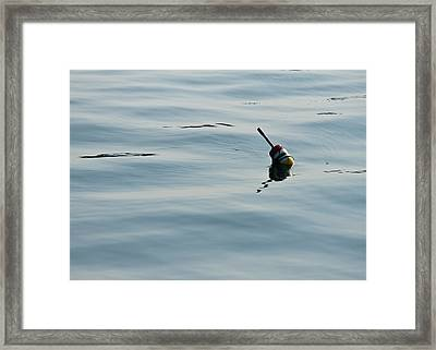 Lobster Buoy Framed Print by Edward Myers
