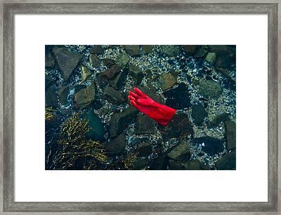 Lobster Glove Framed Print