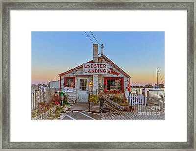 Framed Print featuring the photograph Lobster Landing Sunset by Edward Fielding