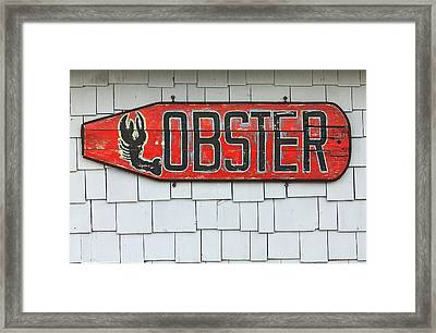 Lobster Paddle Framed Print