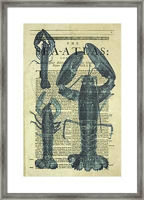 Lobster Sea Atlas Framed Print by Erin Cadigan