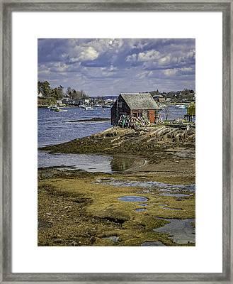 Lobster Shanty Framed Print