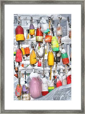 Lobster Trap Buoys Collection In Snow Framed Print