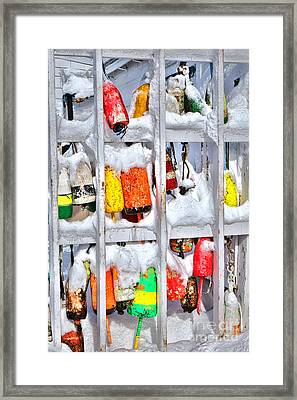 Lobster Trap Buoys In Winter Framed Print
