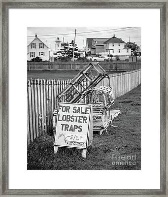Lobster Traps For Sale Framed Print