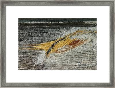 Local Galaxy - Framed Print