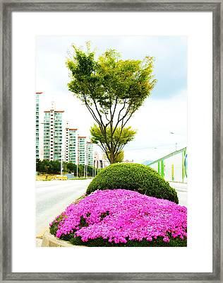 Local Greenery 1 Framed Print by Michael C Crane