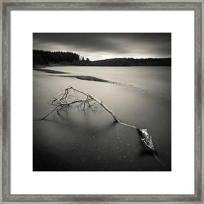 Loch Avich Branch Framed Print by Dave Bowman