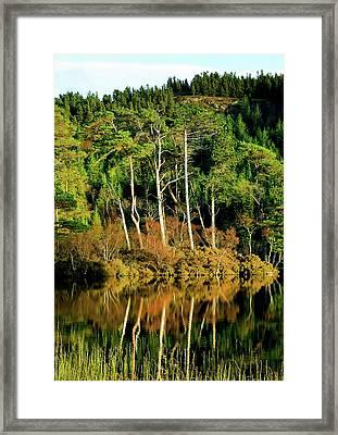 Loch Lundie Framed Print