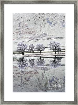 Loch Of The Lowes Framed Print by Tim Gainey