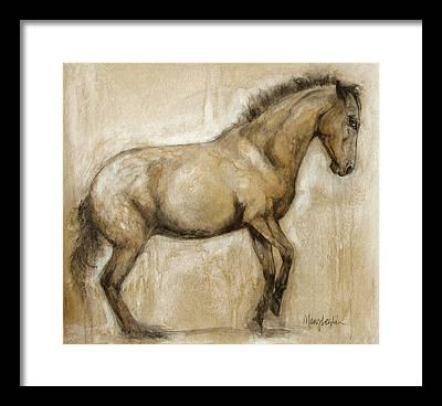 Equine Framed Prints