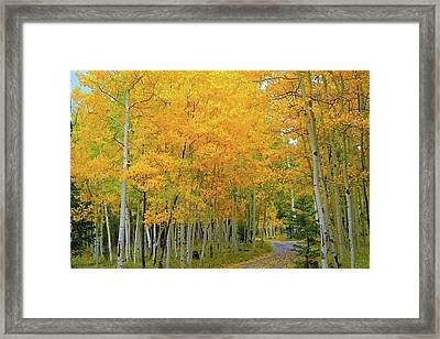 Lockett Meadow A Moment In Time Framed Print