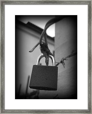 Locking Love Framed Print by Haley Evans