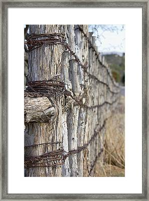 Framed Print featuring the photograph Log And Wire Fence by Phyllis Denton