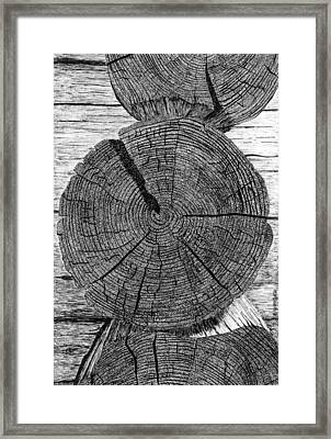Log Ends Framed Print