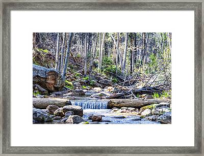 Framed Print featuring the photograph Log Falls by Anthony Citro