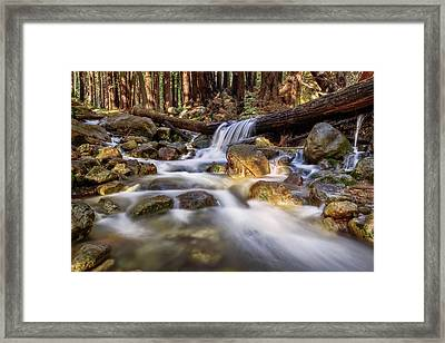 Log Falls On Limekiln Creek Framed Print