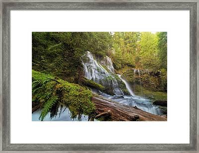 Log Jam By Panther Creek Falls Framed Print