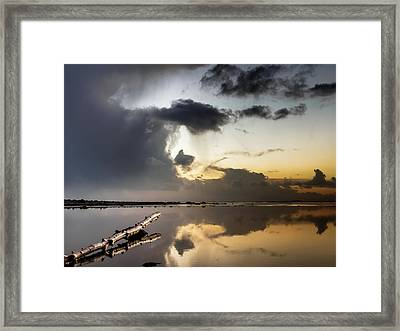 Log Pointing To Sunset Framed Print by Greg Nyquist