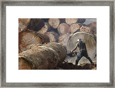 Logger Cutting Tree Trunk, Cameroon Framed Print
