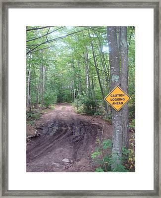Logging Road Framed Print by Lauris Burns