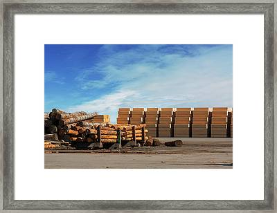 Logs And Plywood At Lumber Mill Framed Print