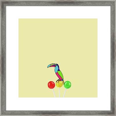 Lolipop Bird Framed Print