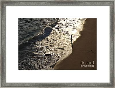 Lone Beach Walker 2 Framed Print by Angelo DeVal