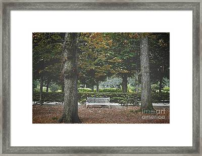 Lone Bench At The Rodin Museum Paris Framed Print