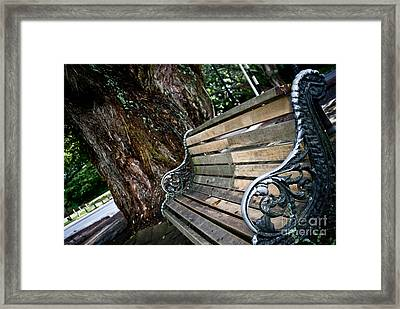 Framed Print featuring the photograph Lone Bench In The Park by Yurix Sardinelly