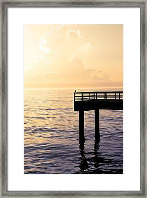 Lone Bird At Morning Framed Print by Marilyn Hunt