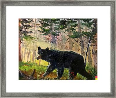 Lone Black Bear Framed Print by Bryan Benson
