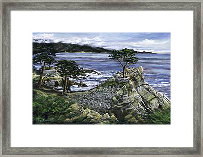 Lone Cypress Framed Print by Lisa Reinhardt